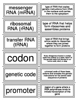 Flash Cards covering DNA and Proteins