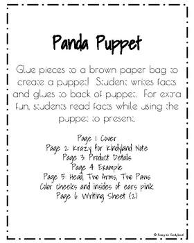 Panda Craft: Puppet (Zoo, Summer, Animal Research)