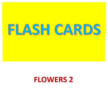 Flash cards -- Flowers 2