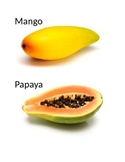 Flash cards of fruits and vegetables