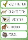Flashcard Dinosaur