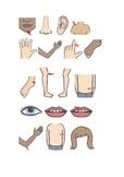 Flashcard parti del corpo ed espressioni utili dal dottore