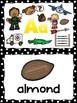 Flashcards Aa