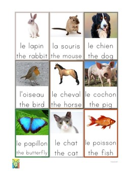Flashcards Animals in French and English