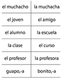 Flashcards Así Se Dice Level 1 Chapter 1 - ¿Cómo somos?