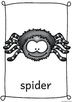 Flashcards Itsy Bitsy Spider