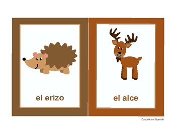 Flashcards animales selva / Forest animals