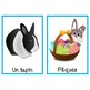 Flashcards du printemps (French Spring Flashcards)