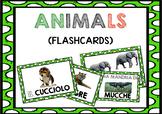 Flashcards for learners of Italian (ANIMALS / GLI ANIMALI in Italian)