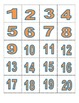Flashcards- numerals and number words
