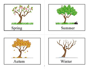 Flashcards seasons of the year