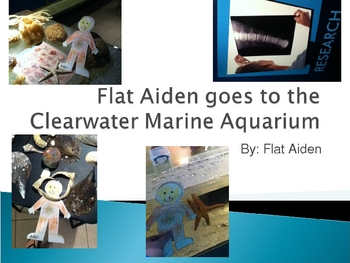 """""""Flat Aiden"""" Story"""