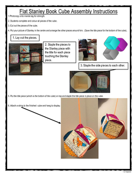 Flat Stanley Ball and Cube Novel Projects