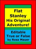 Flat Stanley His Original Adventure Editable Book Unit