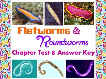 Flatworm & Roundworm Test for Biology or Zoology