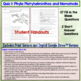 Flatworms and Roundworms (Platyhelminthes Nematoda) Quiz