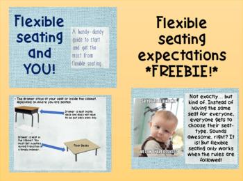 Flexible Seating Guidelines *FREEBIE!*