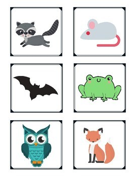 Flexible Thinking Sorting Cards- Animals