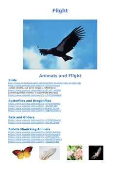Flight: A Technology Investigation and Study