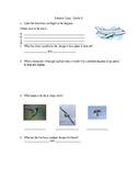 Flight Quiz