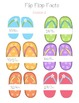 Flip Flop Facts-Multiplicaiton and Division Summer Fun