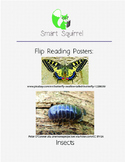 Flip Reading - Insects