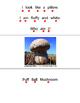 Flip Reading -Mushrooms