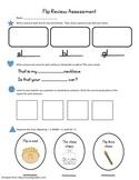 Flip Review Assessment - Treasures Unit 1 Story 4