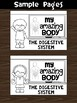 Flipbook / Minibook : The Digestive System : Step 1 - Learn Words Color & Write