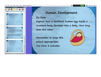 Flipchart for Notes on Human Development
