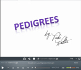 Flipped Lesson: Pedigrees (Video and Follow up Question)