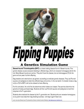 Flipping Puppies, A Genetics Simulation Game; selective breeding; Punnett square
