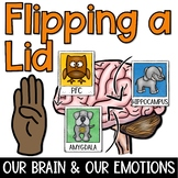 Flipping a Lid: Parts of the Brain and Our Emotions Distance Learning Friendly