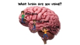 Flipping the lid brain/ upstairs and downstairs brain for middle and high school