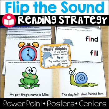 Flippy Dolphin Reading Strategy: Lesson Plan, Center, Powe
