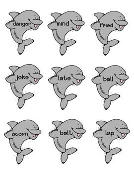 Flippy the Dolphin Practice