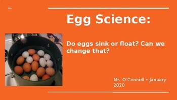 Floating Egg Science Activity