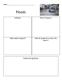 Flood graphic organizer