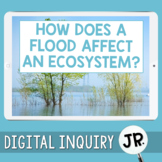 Floods and Ecosystems Digital Inquiry Jr.     3rd Grade