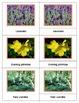 Popular Flora of North America: Montessori Three Part Cards