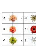 Floral Letter Match