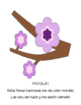 Flores de Primavera (Big Book)