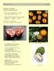 Flores y Frutos - Conversación Clase 8