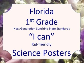 Florida 1st Grade Science Next Generation Sunshine State Standards NGSSS Posters