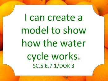 Florida 5th Fifth Grade Science Standards NGSSS Orange Border