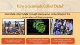 Florida 5th Grade Big Idea 1 & 2 All Inclusive Science Lessons