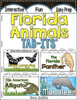 Florida Animals