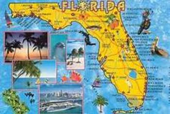 Florida Brochure