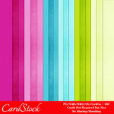 Florida Here We Come A4 size Card Stock Digital Papers