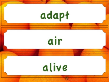 Florida Science Word Wall 1st First Grade Vocabulary NGSSS Aligned Orange Brder